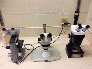 optical-microscopy-station